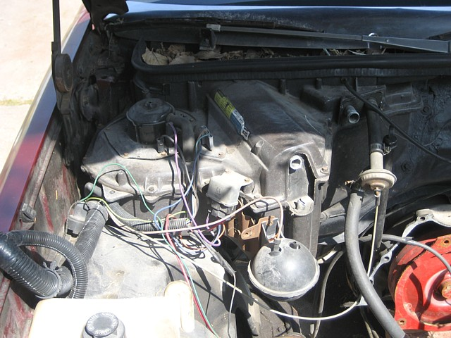86 monte carlo wiring harness view topic cleaning up    wiring    under hood  pics and  s  view topic cleaning up    wiring    under hood  pics and  s